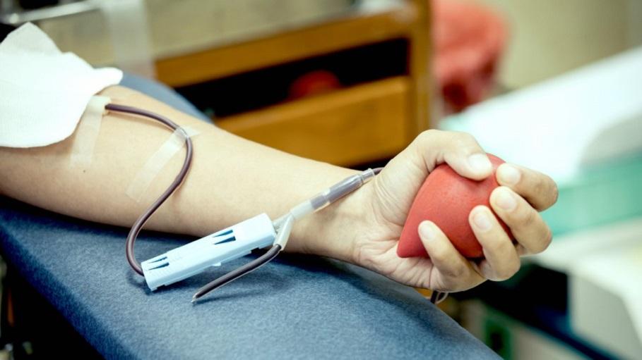 Donación De La Sangre Valencia Maratón En Ciudad 7ybf6g