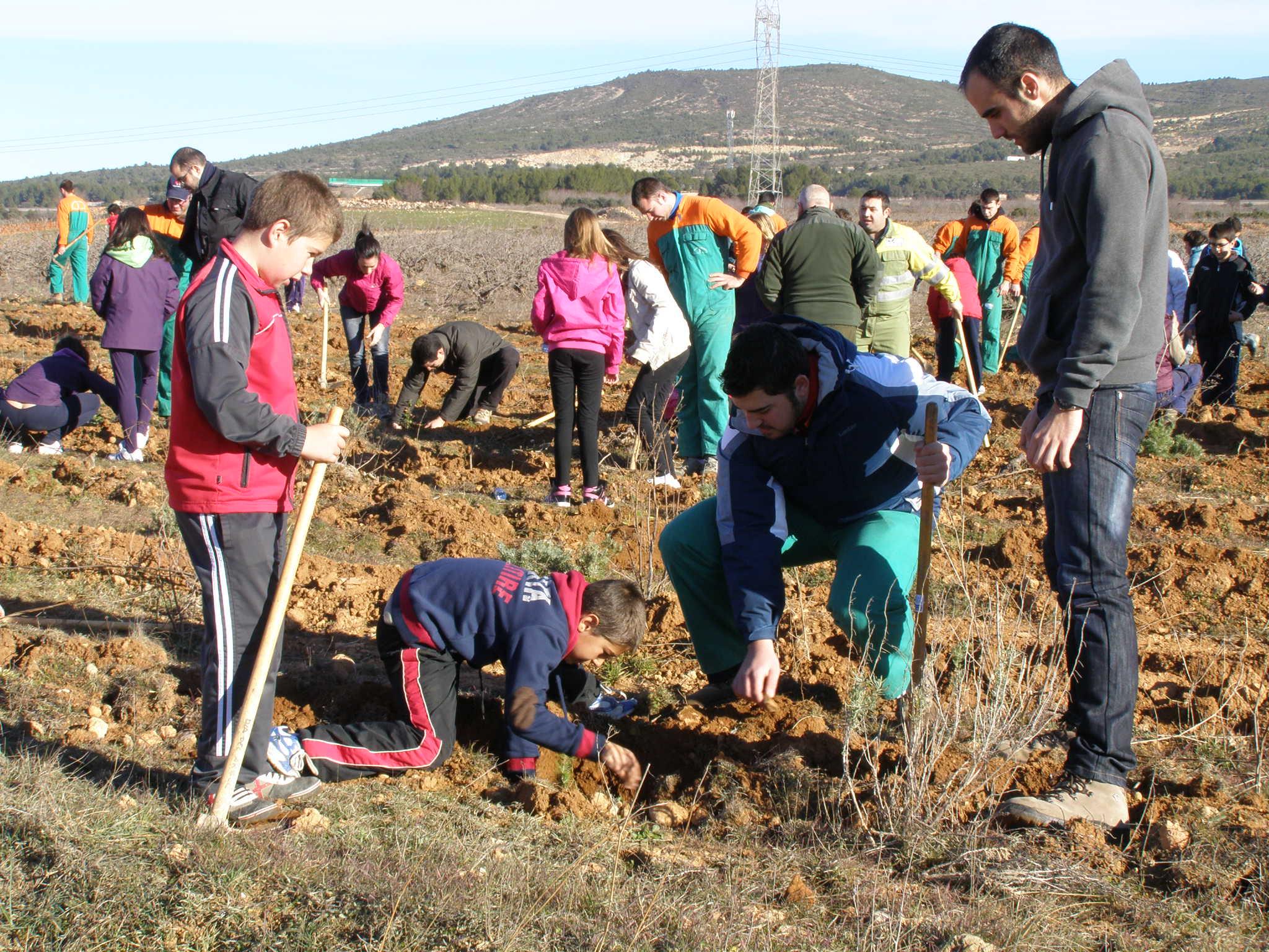 Actividades GRATUITAS para celebrar el Día del Árbol y el Día Mundial de los Humedales 2019