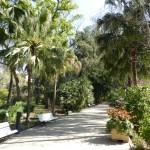 ¿Sabías que el Jardín Botánico de Valencia es el más antiguo de España por fundación?