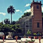 Jornada de puertas abiertas con mercado y visitas guiadas gratuitas en el Jardín Botánico