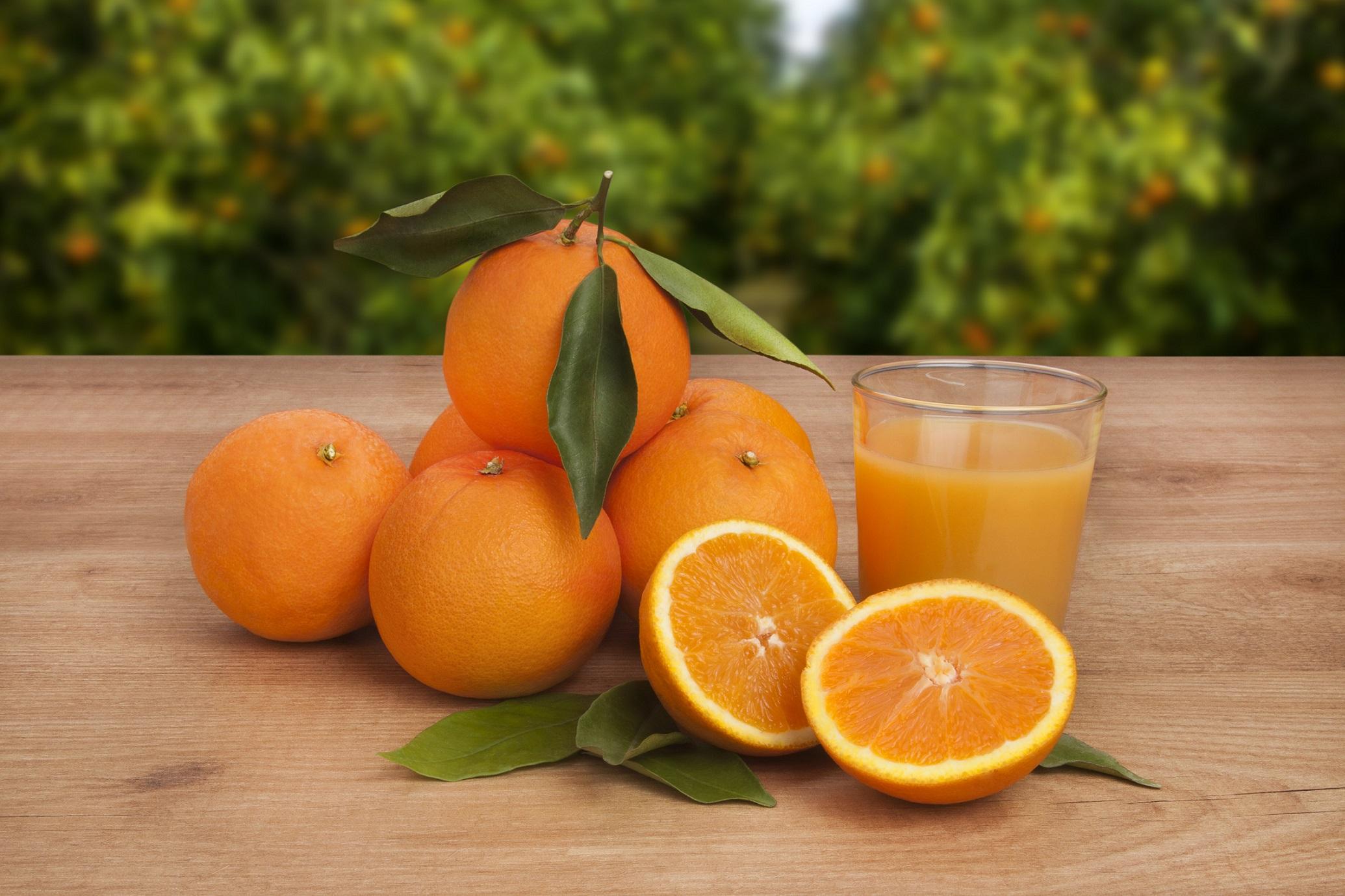 Las naranjas con Denominación de Origen de Valencia, uno de los referentes mundiales