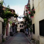 La bonita iniciativa de Aras de los Olmos: llenar 12 rincones del pueblo con flores y plantas