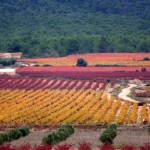 Les Terres dels Alforins o la llamada Toscana valenciana: un lugar para perderse