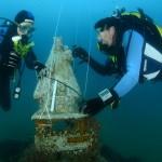 Ofrenda de flores a la Mare de Déu dels Desamparats submarina el domingo 2 de octubre