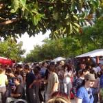 XXIX Fira Alternativa de València: 3, 4 y 5 de junio de 2016