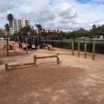 Valencia cierra con candado las zonas de socialización para perros para evitar la acumulación de personas