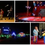 Circos de Navidad en Valencia, Navidades 2016