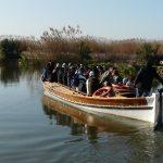 Paseos en barca, visitas guiadas y actividades GRATUITAS en el Tancat de la Pipa el 5 de febrero