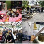 Vuelve la Mostra de Vins, Caves i Licors i d´Aliments Tradicionals de la Comunitat Valenciana