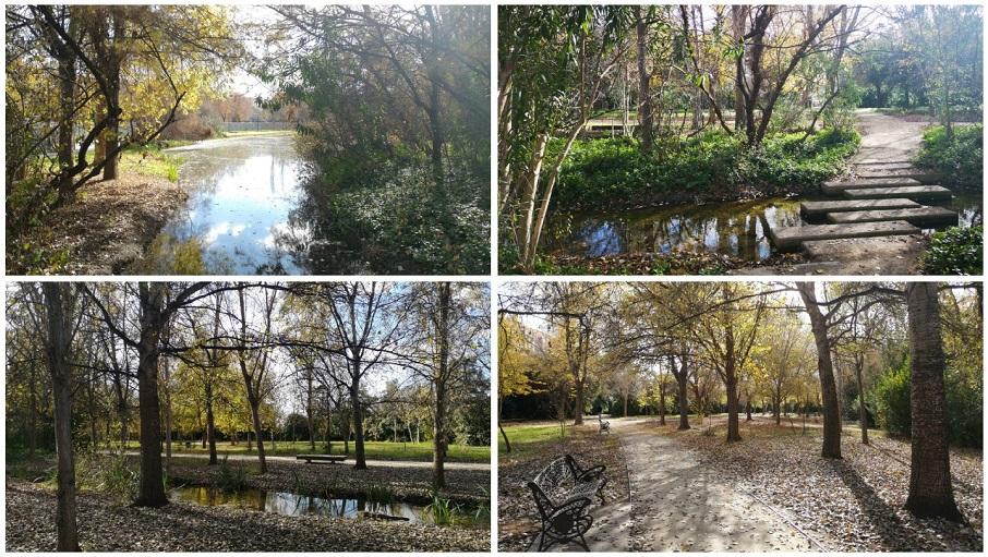 El parque de la Rambleta, un pequeño oasis de agua y vegetación en Valencia capital