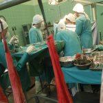 La Comunitat Valenciana, líder mundial en donaciones y trasplantes en 2017