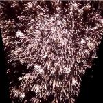 """La """"Nit de L´Alba de les Falles"""" llenará Valencia con más de 300 fuegos artificiales a la vez en la Plantà"""