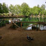 Rincones bonitos de la provincia de Valencia que tienes que visitar una vez en tu vida