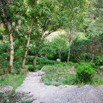 El Paraje Natural Municipal de Tabarla, la joya de Yátova