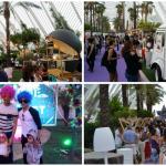 L'Umbracle celebra el domingo 24 de junio una jornada con actividades dirigidas a todos los públicos