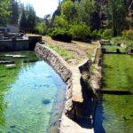 La antigua Piscifactoría de La Tosquilla, paraje de aguas cristalinas en Titaguas