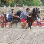 El XIV Concurso de Tiro y Arrastre Ciudad de Valencia se celebra del 15 al 30 de septiembre