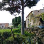 El Molinar, la preciosa aldea de El Toro donde el tiempo se ha detenido