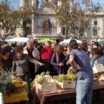 La fiesta de los mercados extraordinarios llega a la plaza del Ayuntamiento con 360 puestos