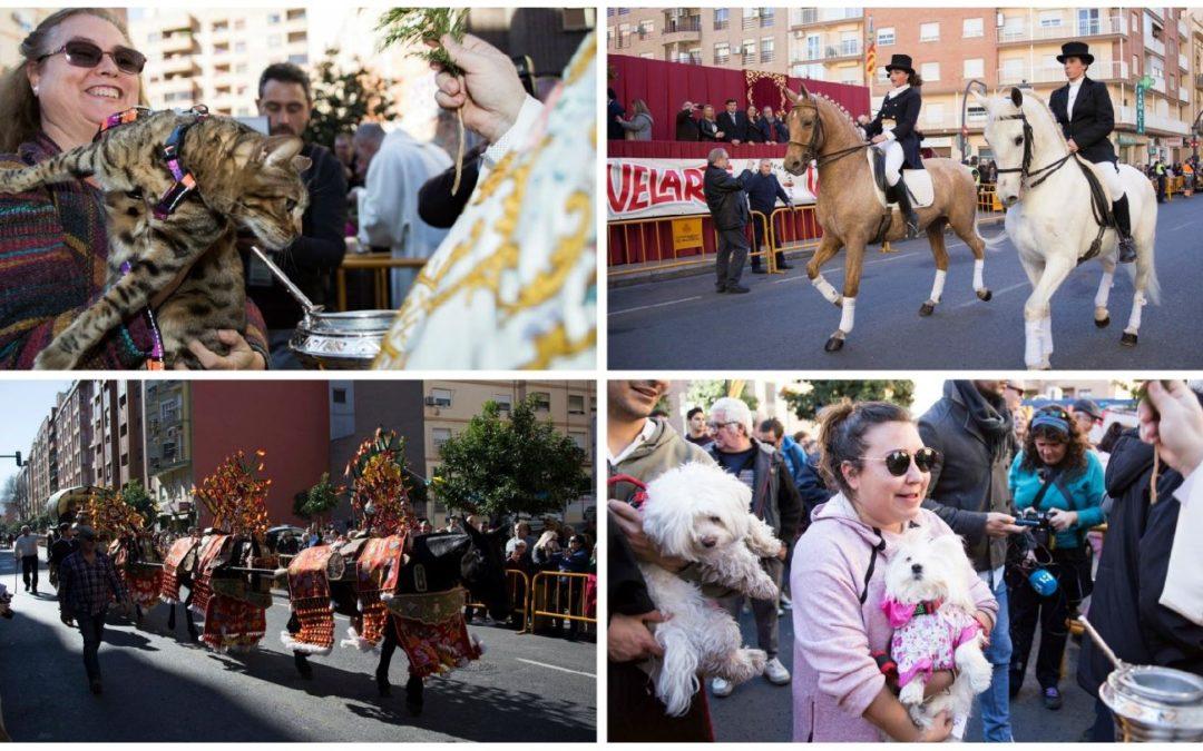 La fiesta de San Antonio Abad de la calle Sagunto de Valencia declarada de Interés Turístico