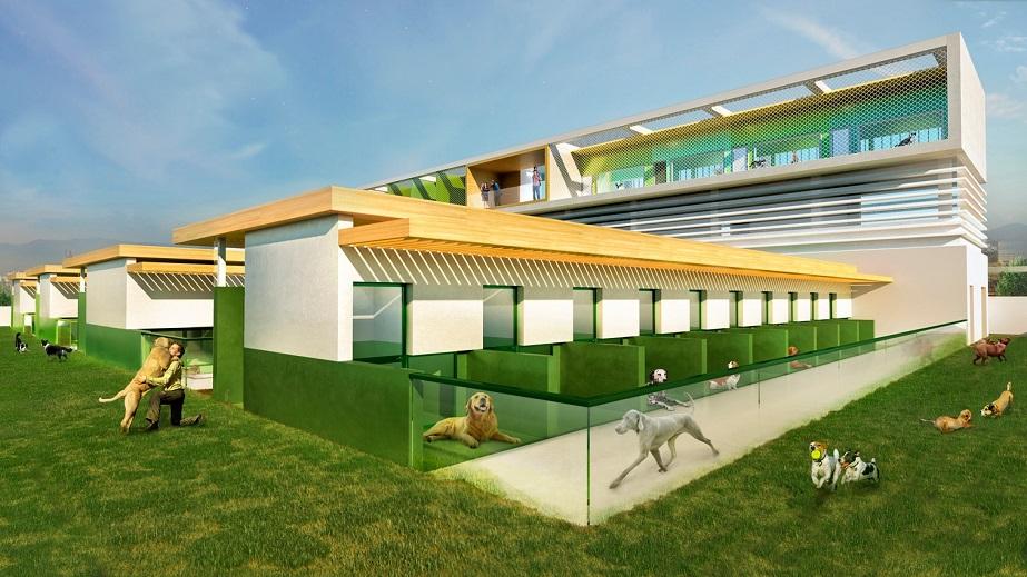 Valencia construirá un nuevo refugio de animales abandonados