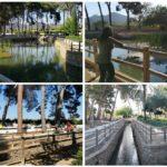 La Font de Quart de Les Valls, un bonito manantial de agua dulce en pleno Camp de Morvedre