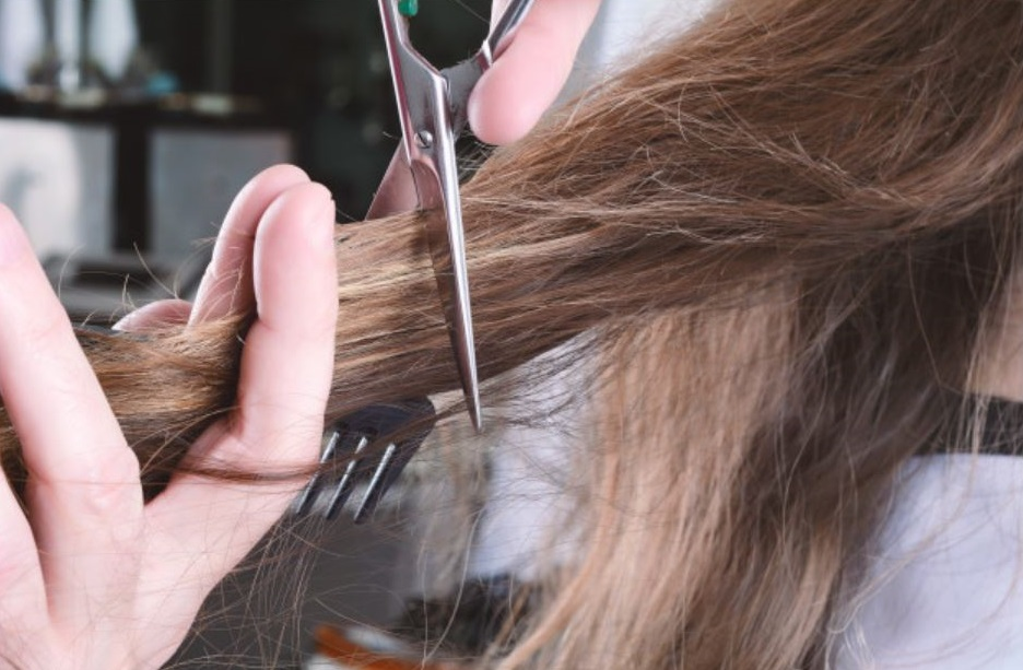 Valencia quiere batir el récord del mundo del mayor número de cortadores de pelo al mismo tiempo