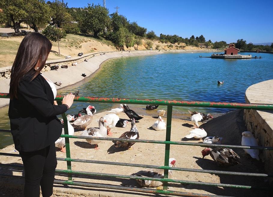 El Planell de Buñol, un precioso parque con estanque para pasear o hacer deporte