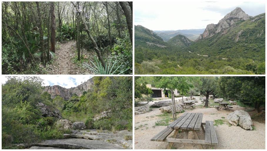 El Paraje Natural del Parpalló-Borrell, un precioso recorrido lleno de vegetación