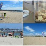 La playa para perros de Pinedo estrena una nueva temporada de baño con aforo limitado