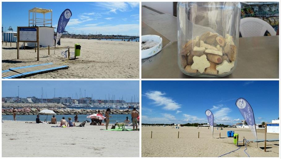 La playa para perros de Pinedo estrena una nueva temporada de baño