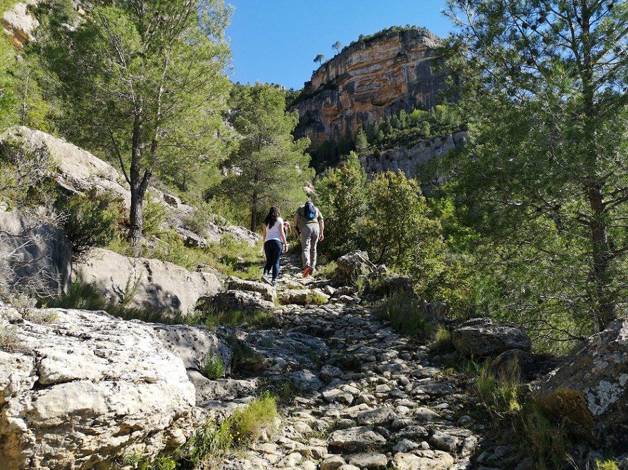 La senda Cavanilles o de La Cortada, la preciosa senda histórica de Cortes de Pallás