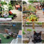 El Jardinet de l´Estació, el paraíso de los gatos