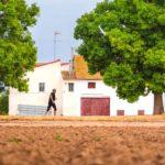 Nace Miradors de L´Horta, el primer festival de diseño y cultura de la huerta de Valencia