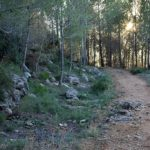 Regresan las rutas GRATUITAS de Senderisme Entre Muntanyes 2019