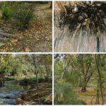 El Estret de les Aigües de Bellús, una bella ruta con patrimonio natural y arqueológico