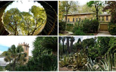 El último domingo de cada mes, visitas guiadas gratuitas en el Jardín Botánico de Valencia