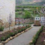 Los jardines efímeros y las fachadas en flor vuelven a Aras de los Olmos con Aras en Flor 2020