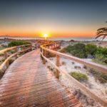 Los Arenales del Sol, un paisaje salvaje, con pasarelas de madera, que conduce a playas de arena fina