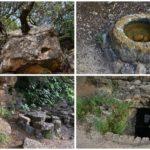 El Paraje de la Font de la Mata, un rincón con un aljibe, un pozo árabe y un llentiscle de más de 600 años