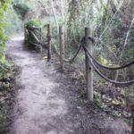 La senda del botánico Manuel Calduch, un bello paseo botánico a orillas del río Mijares