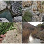 El Barranco del Oro o de la Morería, ruta por el camino del Yeso