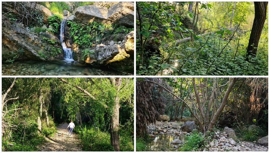 La Ruta del Agua del Montitxelvo y el paraje natural de la Font de Ferri