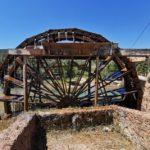 La Noria de Casas del Río, la última noria de riego que se mantiene activa en la Comunitat Valenciana