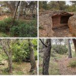 La Vallesa: un pulmón verde, a un paso de Valencia, que esconde diversos tesoros patrimoniales