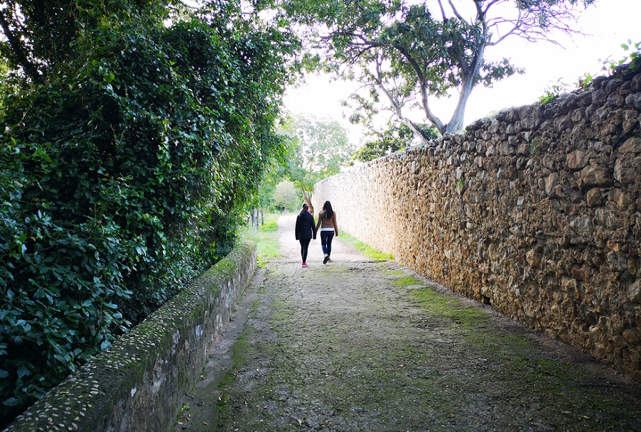 Las mejores rutas de senderismo para hacer con niños en Valencia