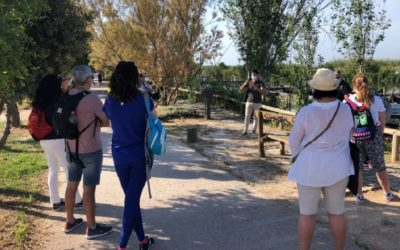 Visitas guiadas GRATUITAS en el Parque Natural de la Albufera