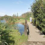 La Ruta del Riu Salinar, un sencillo itinerario interpretativo en pleno parque natural