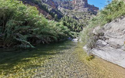 Las escondidas pozas del río Villahermosa junto al barranco de Quiles