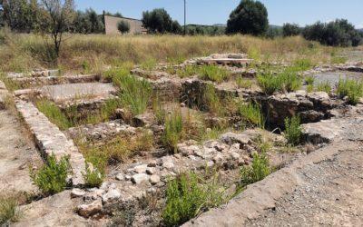 Las Termas Romanas de Santa, un patrimonio en el olvido junto a la carretera CV-190